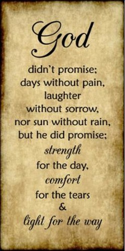 didn't promise; 