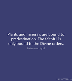 Plants and minerals are bound to 
