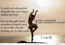 I could not adequately 
