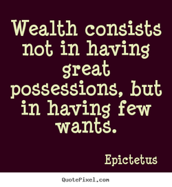 Wealth Consists Not In Having Great Possessions Essay Sample