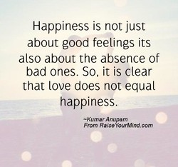 Happiness is not just 