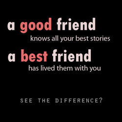 good friend a knows all your best stories best friend a has lived them with you SEE THE DIFFERENCE?
