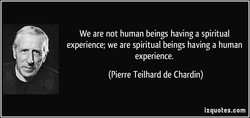 We are not human beings having a spiritual 