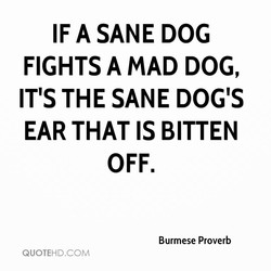 IF A SANE DOG 