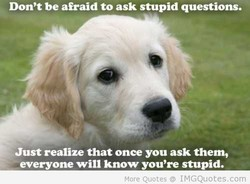 Don't be afraid to ask stupid questions. 