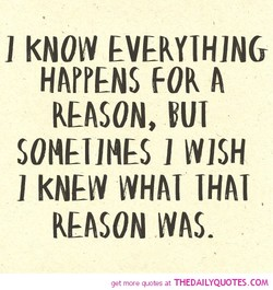 1 KNOW EVERYTHING 