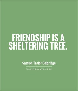 FRIENDSHIP IS A 