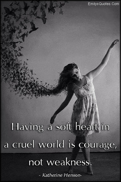 Emilys Quotae Corn 