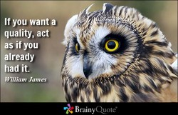 If you want a 
