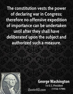 The constitution vests the power 