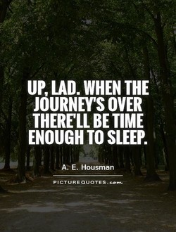 UP, LAD. WHEN THE 