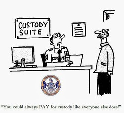 'CUSTODY' 