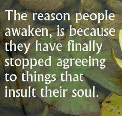 The reason people 