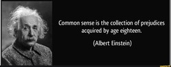 Common sense is the collection of prejudices 