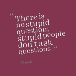 There is no stupid question: stupid people don t ask questions. Olivia •