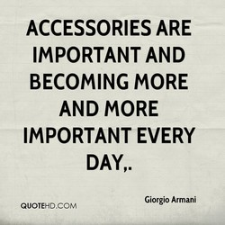 ACCESSORIES ARE 