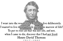 I went into the woods.for I wished to live deliberately. 