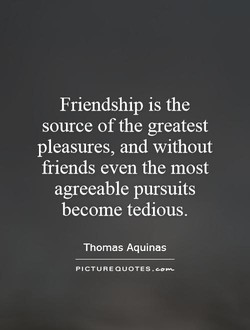 Friendship is the 