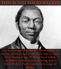 THIS IS NOT DAVID 