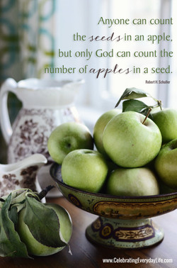 Anyone can count 