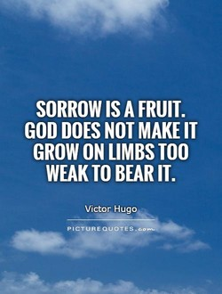 SORROW IS A FRUIT. 