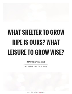 WHAT SHELTER TO GROW 