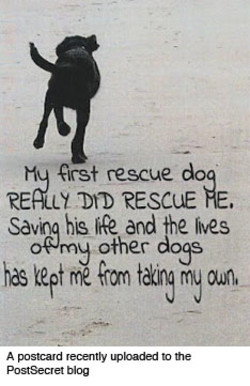Hq qrst rescue 