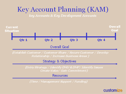 Key Account Planning (KAM) 