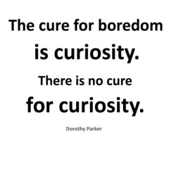 The cure for boredom 