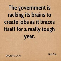 The government is 