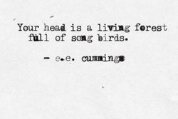 Your head is a living forest 