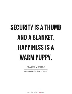 SECURITY IS A THUMB 