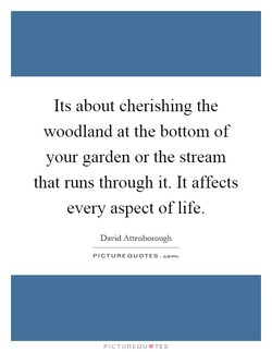 Its about cherishing the 