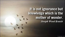 It is not ignorance but 