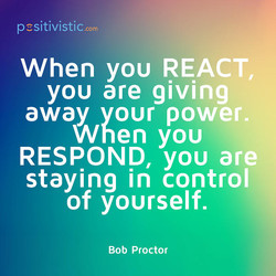 pcsitivistic.com 