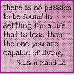 Ihere is no passion 