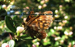 Happiness is notread€5inåde, 