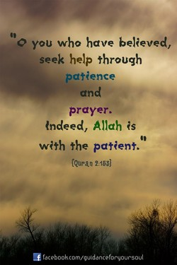 YOU who have belQeved, 