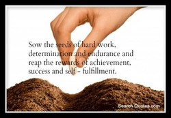 Sow the. e 