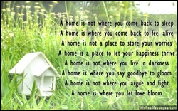 is ndi where 'o to sleep 