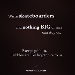 We're skateboarders, 