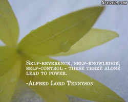 $tEVER.caM 