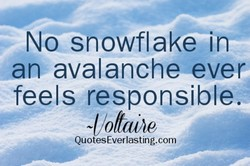 No snowflake it-v 