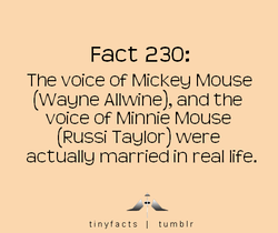Fact 230: 