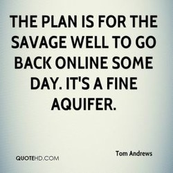 THE PLAN IS FOR THE 