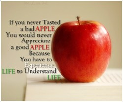 If you never Tasted 