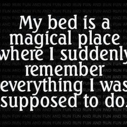 my bed is a 