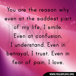 You are the reason why. 