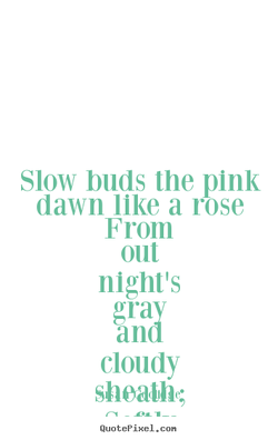 Slow buds the pink 