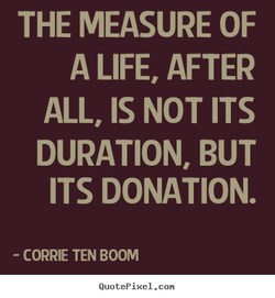 THE MEASURE OF 